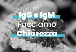 IgM e IgG: facciamo chiarezza